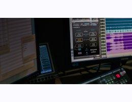 Nugen Audio LM-Correct