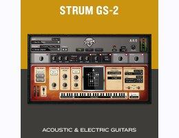 Applied Acoustics Systems Strum GS-2