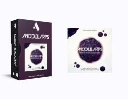 Audiomodern Modularps