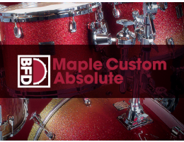 BFD Maple Custom Absolute