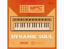 AKAI Professional Dynamic Soul